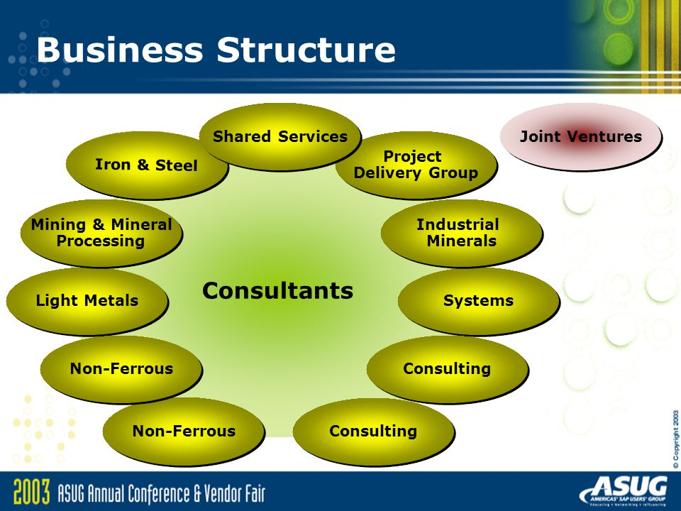 Business Structure Consultants Shared Services Joint Ventures