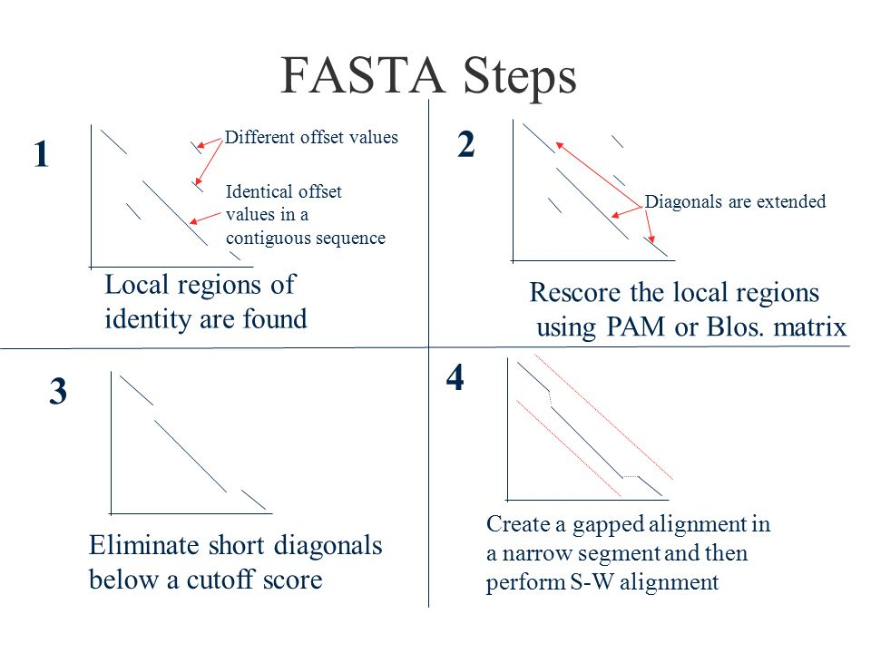 FASTA Steps Local regions of Rescore the local regions