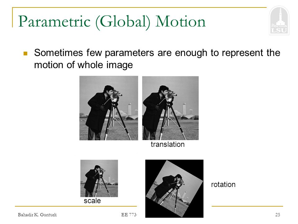 Parametric (Global) Motion