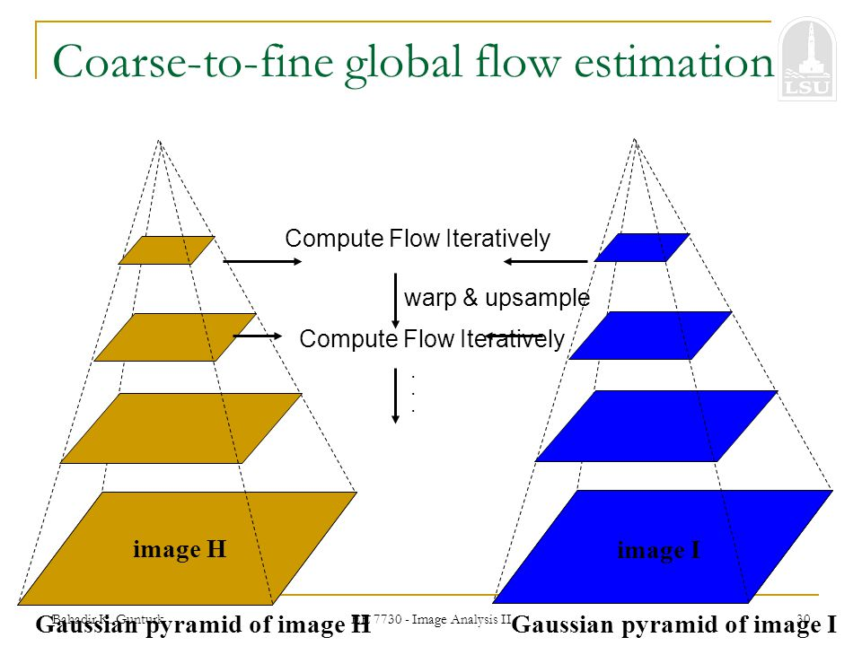 Coarse-to-fine global flow estimation