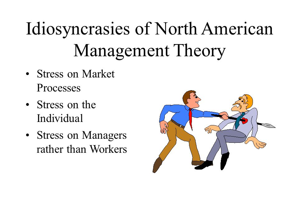 Idiosyncrasies of North American Management Theory