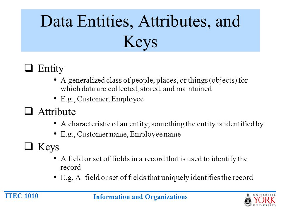 What Is A Data Entity