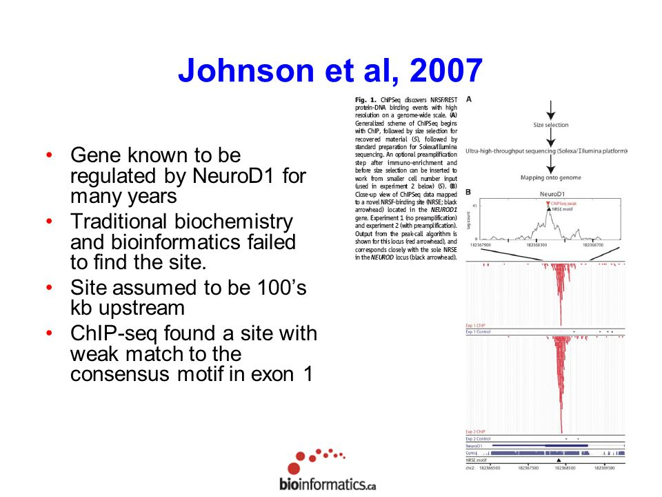 Johnson et al, 2007 Gene known to be regulated by NeuroD1 for many years. Traditional biochemistry and bioinformatics failed to find the site.