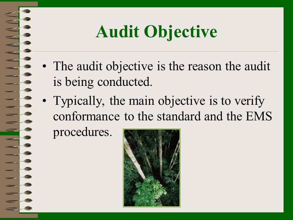 Audit Objective The audit objective is the reason the audit is being conducted.