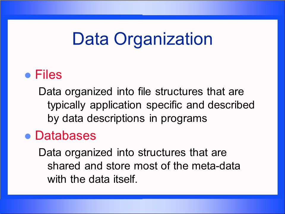 database system vs file system pdf