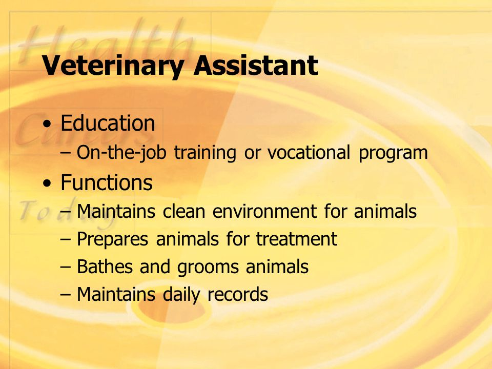 Chapter 27 Veterinary Careers Ppt Video Online Download