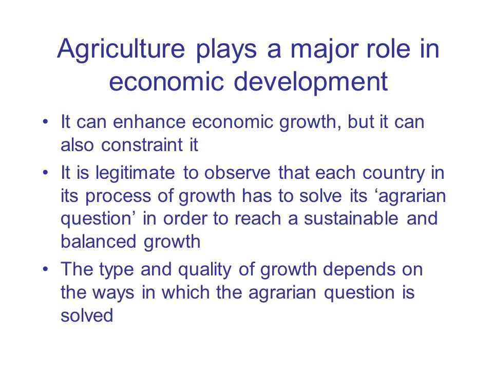 agriculture and economic development timmer
