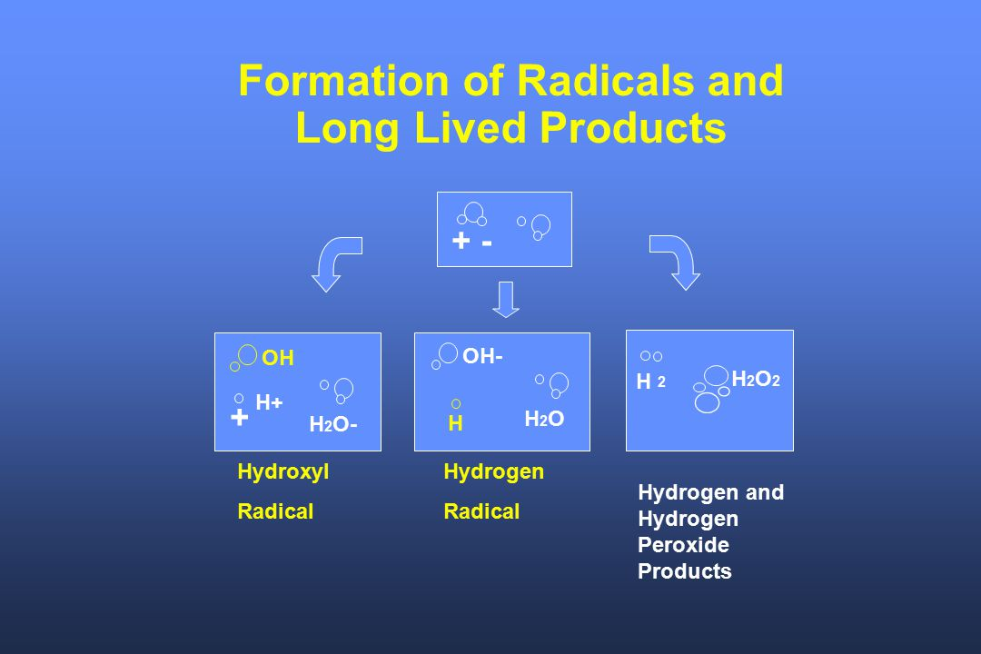 Formation of Radicals and Long Lived Products