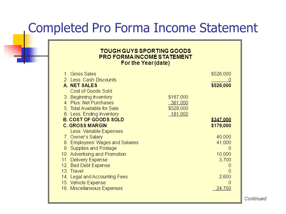 TOUGH GUYS SPORTING GOODS PRO FORMA INCOME STATEMENT