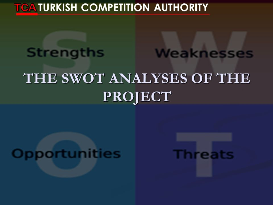 THE SWOT ANALYSES OF THE PROJECT
