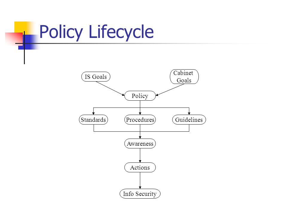Policy Lifecycle Cabinet Goals IS Goals Policy Standards Procedures