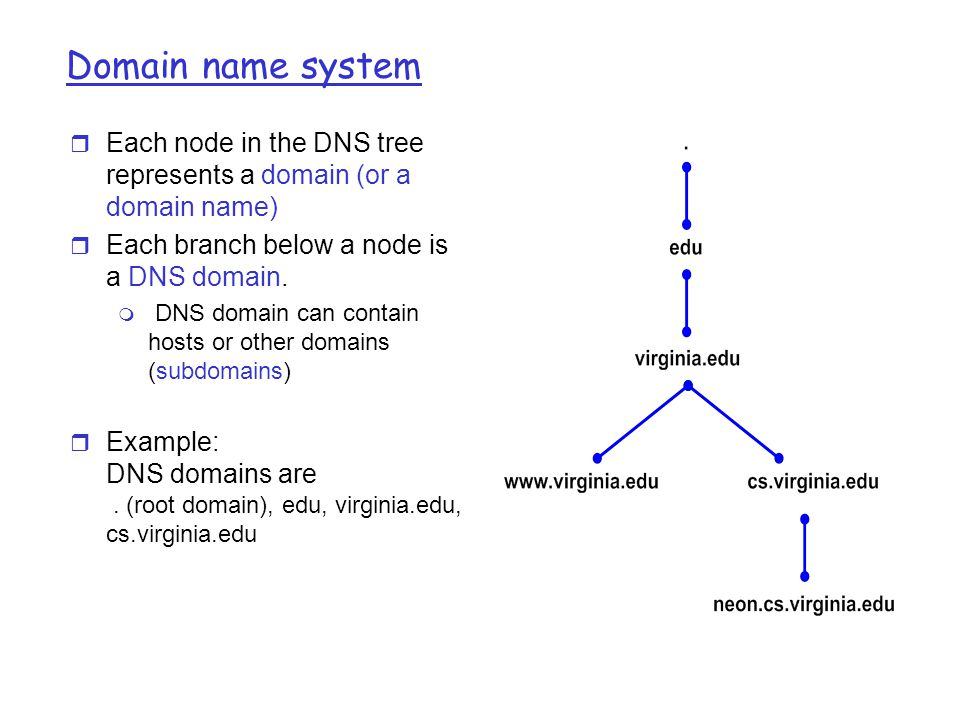 Domain Name System Ip Assigns 32 Bit Addresses To Hosts Interfaces