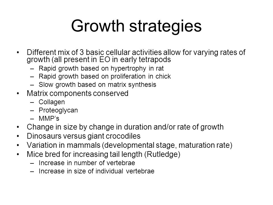 Growth strategies Different mix of 3 basic cellular activities allow for varying rates of growth (all present in EO in early tetrapods.