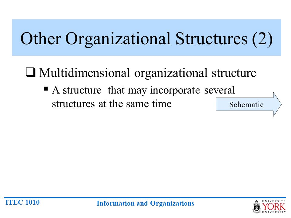 Other Organizational Structures (2)