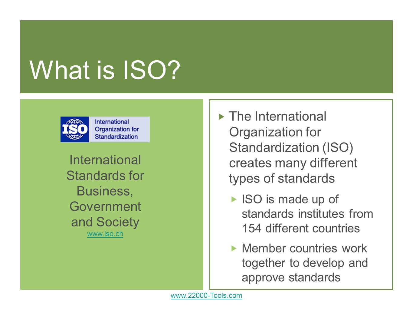 International Standards for Business, Government and Society