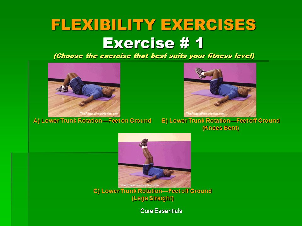 FLEXIBILITY EXERCISES Exercise # 1 (Choose the exercise that best suits your fitness level)