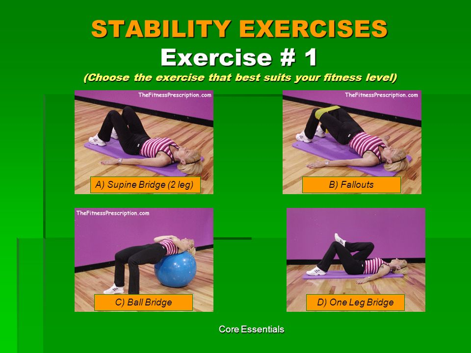 STABILITY EXERCISES Exercise # 1 (Choose the exercise that best suits your fitness level)