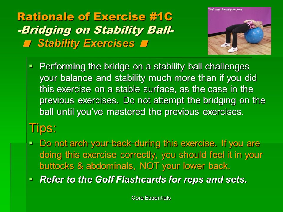 Rationale of Exercise #1C -Bridging on Stability Ball- < Stability Exercises <