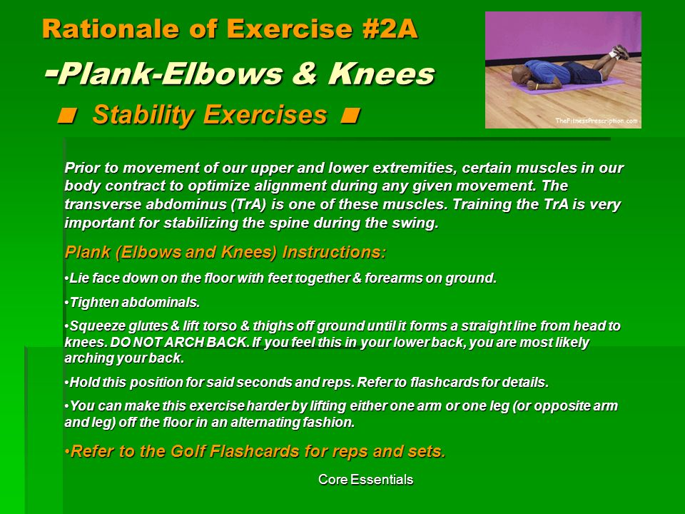 Rationale of Exercise #2A -Plank-Elbows & Knees < Stability Exercises <