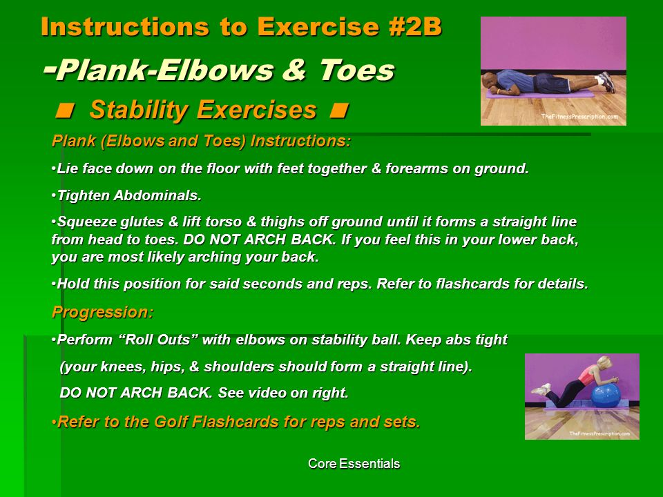 Instructions to Exercise #2B -Plank-Elbows & Toes < Stability Exercises <