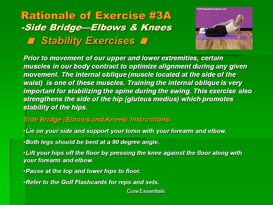 Rationale of Exercise #3A -Side Bridge—Elbows & Knees < Stability Exercises <