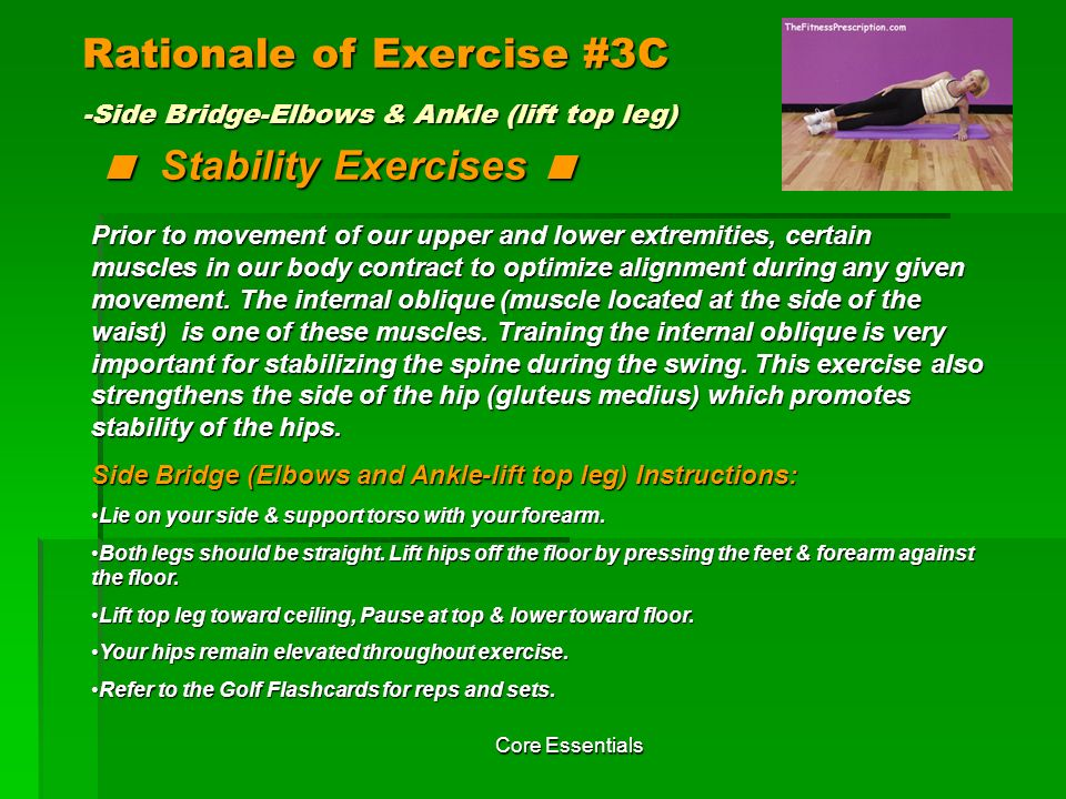 Rationale of Exercise #3C -Side Bridge-Elbows & Ankle (lift top leg) < Stability Exercises <