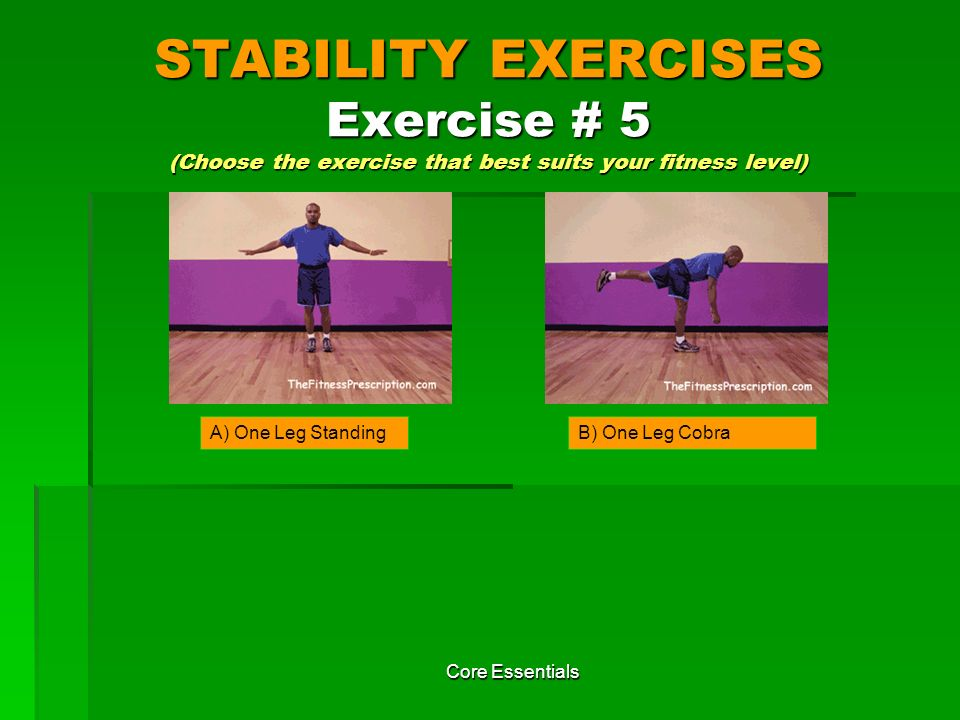 STABILITY EXERCISES Exercise # 5 (Choose the exercise that best suits your fitness level)