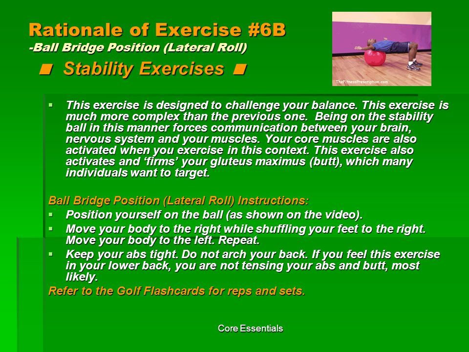 Rationale of Exercise #6B -Ball Bridge Position (Lateral Roll) < Stability Exercises <
