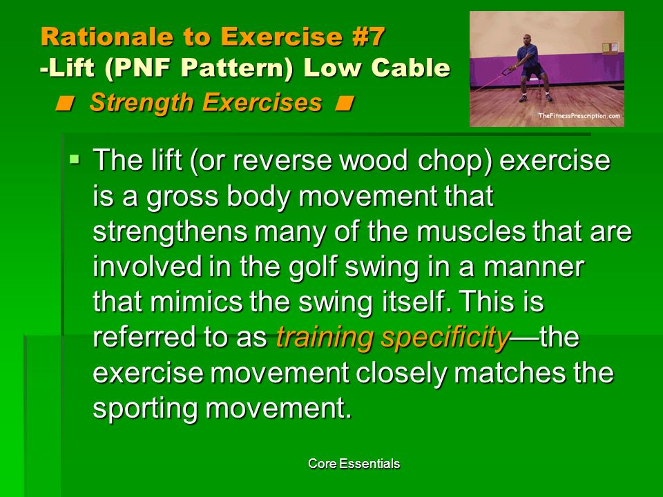 Rationale to Exercise #7 -Lift (PNF Pattern) Low Cable < Strength Exercises <