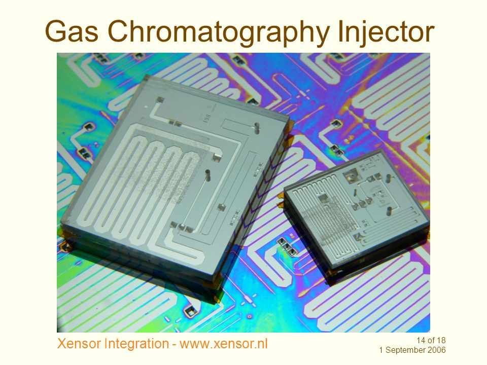 Gas Chromatography Injector