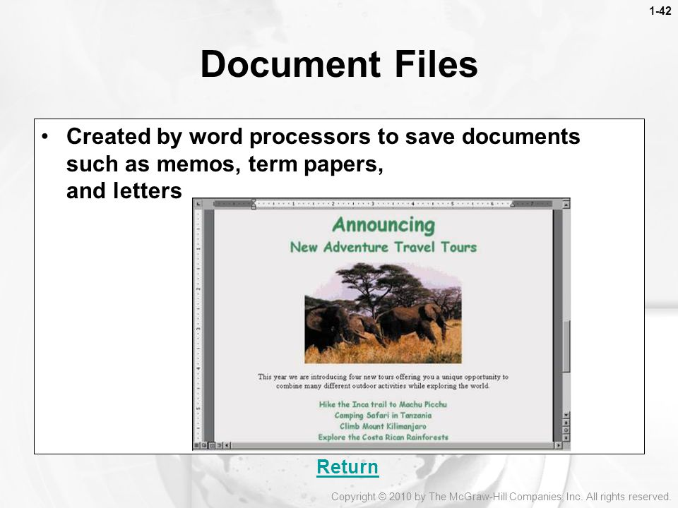 Document Files Created by word processors to save documents such as memos, term papers, and letters.