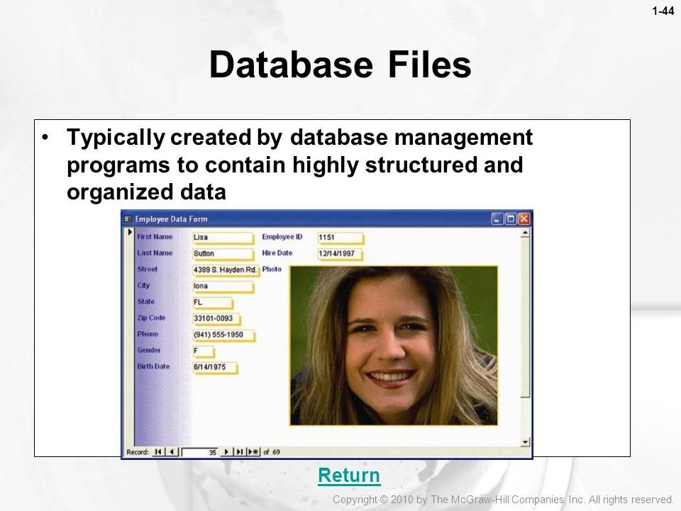 1-44 Database Files. Typically created by database management programs to contain highly structured and organized data.