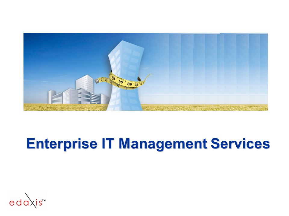 Enterprise IT Management Services