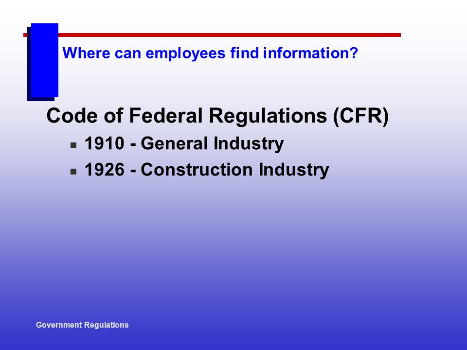 Where can employees find information