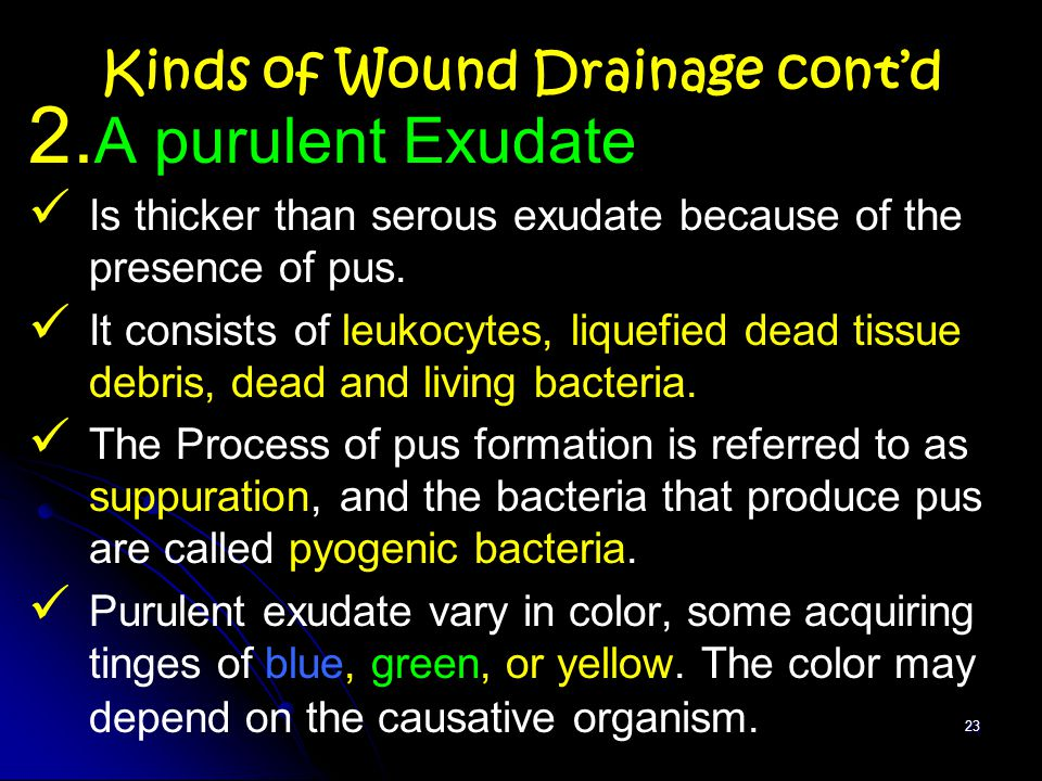 Wound care and dressing - ppt video online download
