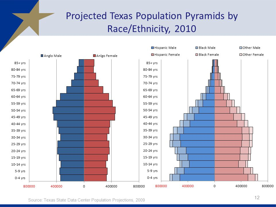 Projected Texas Population Pyramids by Race/Ethnicity, 2010