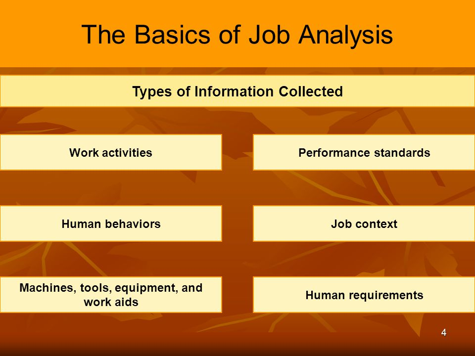 The Basics of Job Analysis
