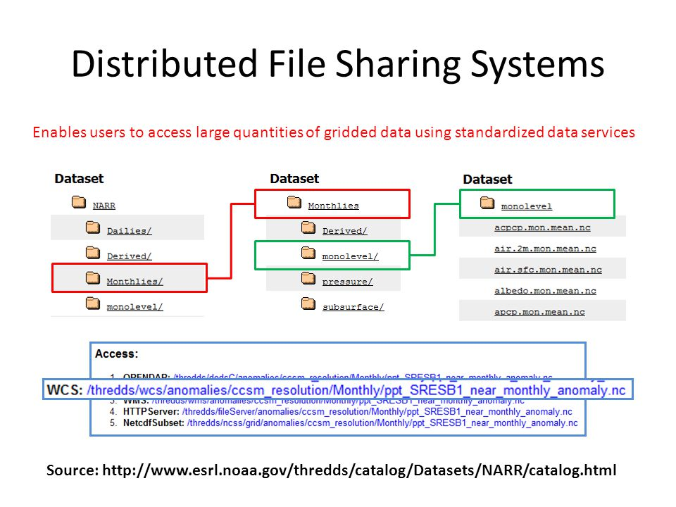 Distributed File Sharing Systems
