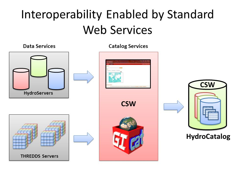 Interoperability Enabled by Standard Web Services