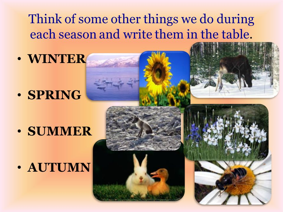 Think of some other things we do during each season and write them in the table.