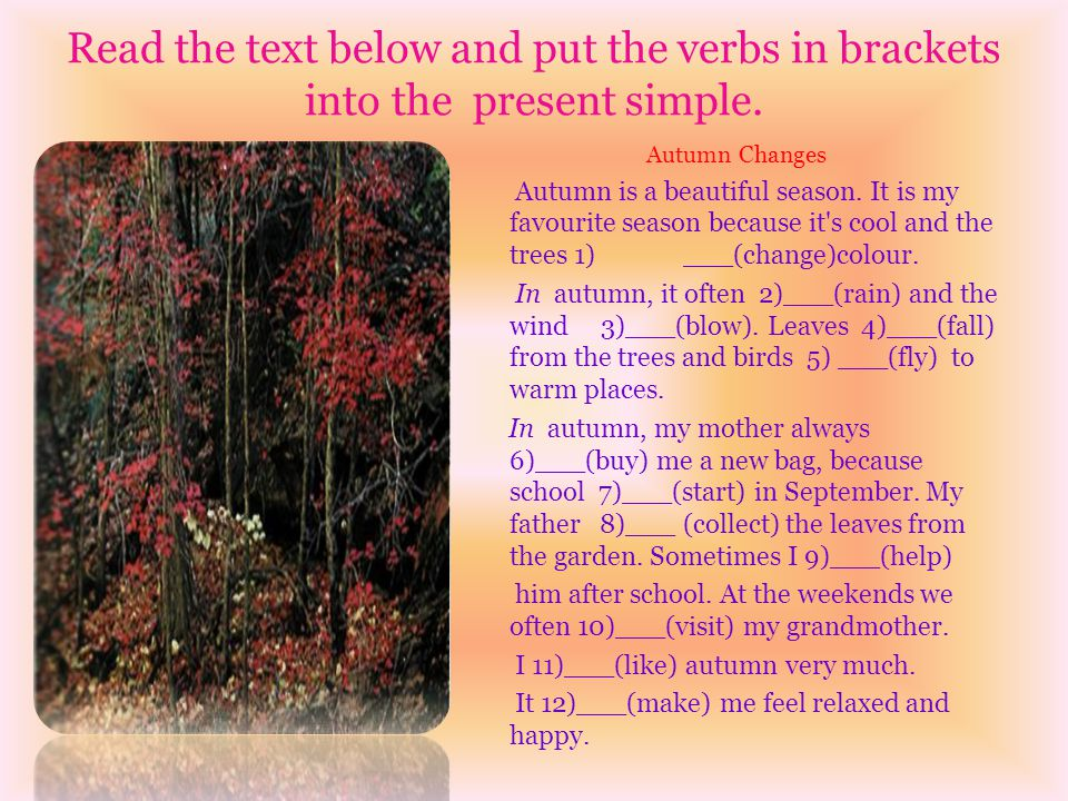 Read the text below and put the verbs in brackets into the present simple.
