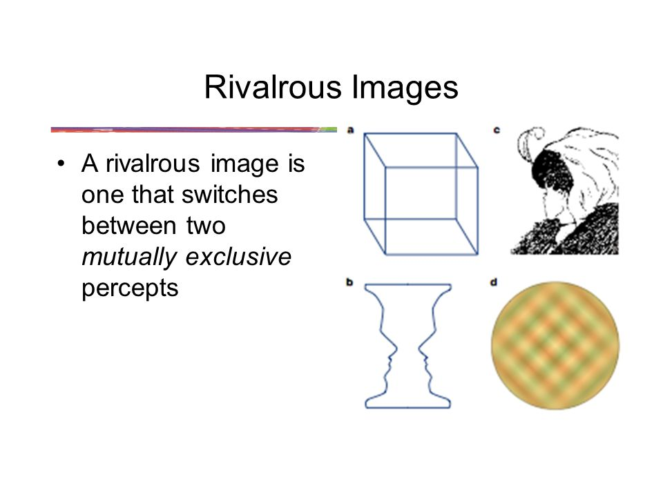 Rivalrous Images A rivalrous image is one that switches between two mutually exclusive percepts