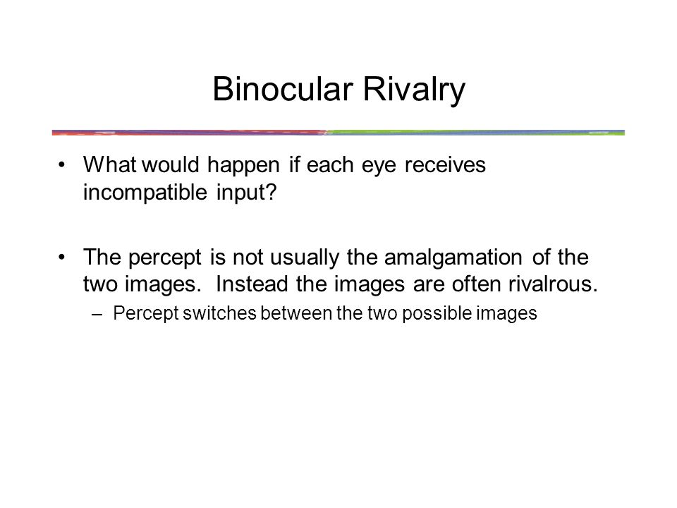 Binocular Rivalry What would happen if each eye receives incompatible input
