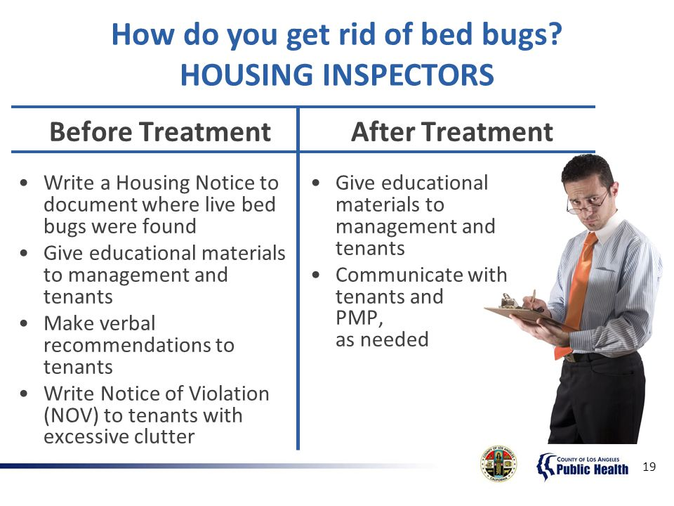 Los angeles county department of public health ppt download how do you get rid of bed bugs housing inspectors spiritdancerdesigns Gallery