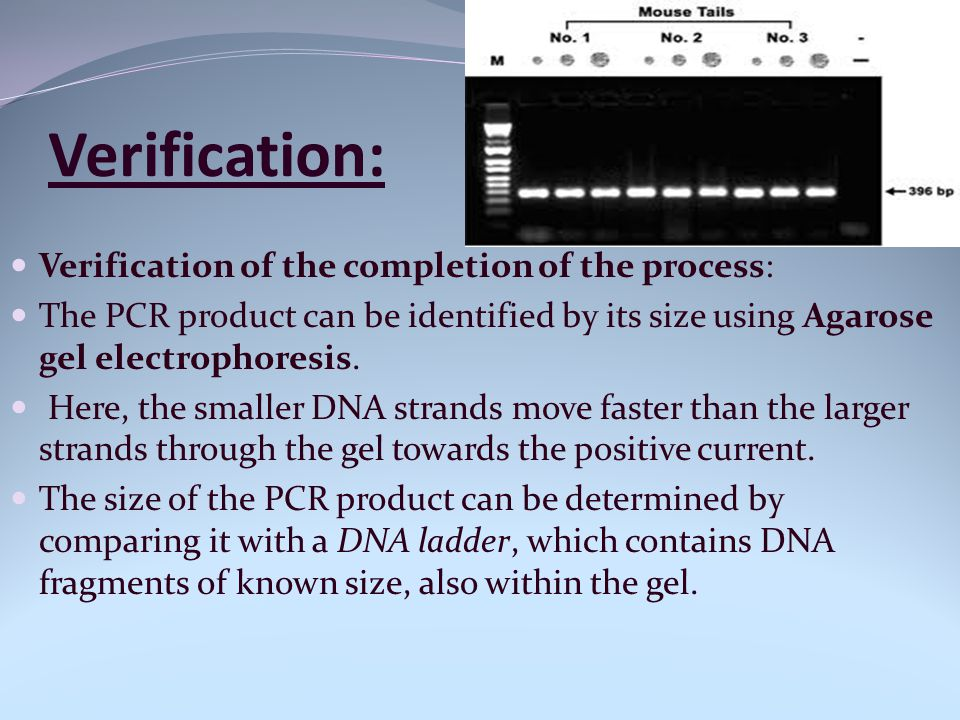 Verification: Verification of the completion of the process: