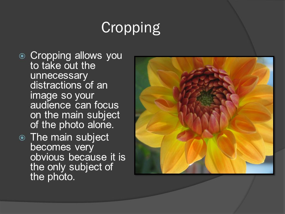 Cropping Cropping allows you to take out the unnecessary distractions of an image so your audience can focus on the main subject of the photo alone.