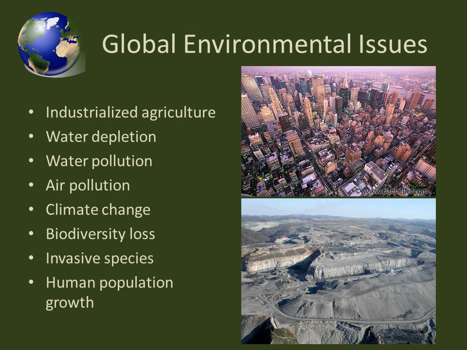 globalisation and environmental issues The environmental problems have become a pressing issue often relating it to the causal effect of globalisation contributed by the human as stated by mol in globalization and environmental reform, the environmental repercussions are often related to the market demand and supply, or also.