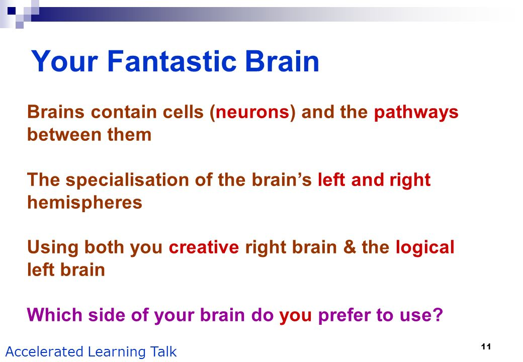 Your Fantastic Brain Brains contain cells (neurons) and the pathways between them. The specialisation of the brain's left and right hemispheres.