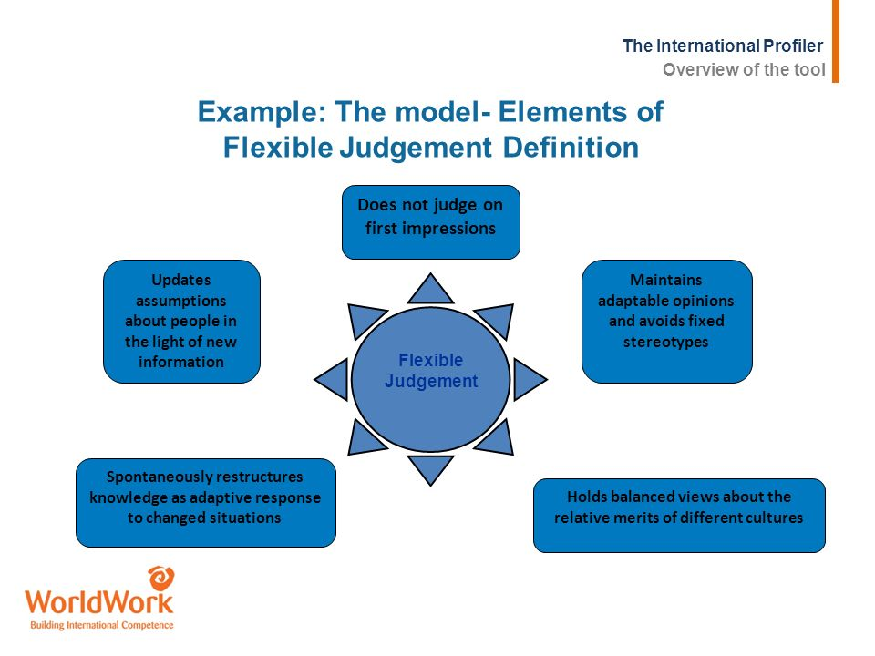 Example: The model- Elements of Flexible Judgement Definition