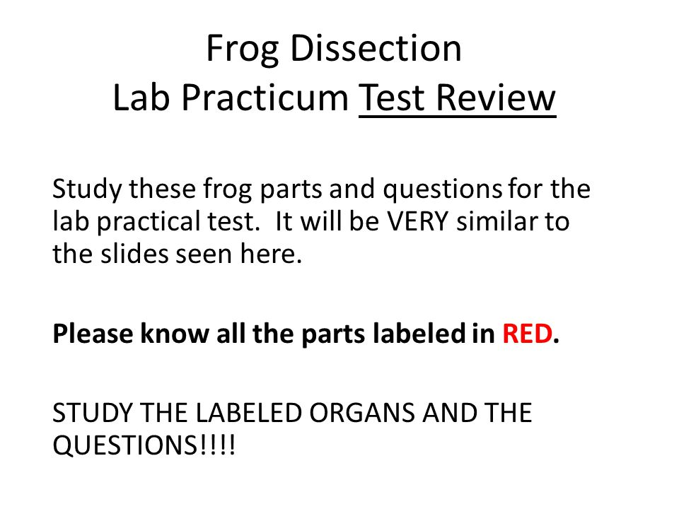 Frog Dissection Lab Practicum Test Review Ppt Download